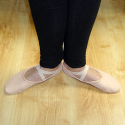 Chacotte ballet shoes, split sole canvas ballet shoes.